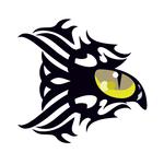 Переводная татуировка «Глаз кошки»