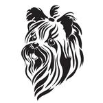 Переводная собака «Йорк»
