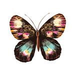 Тату наклейка «Бабочка»
